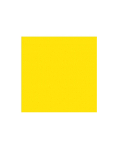 40 x 40cm Duni 2ply Napkin Yellow Compostable